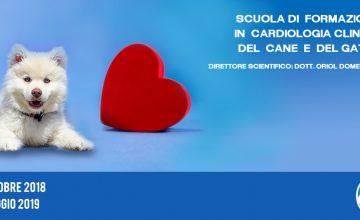 Scuola di formazione in cardiologia clinica del cane e del gatto – 2° Edizione